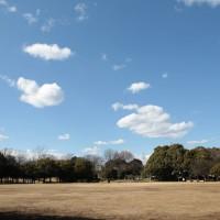 青空の公園